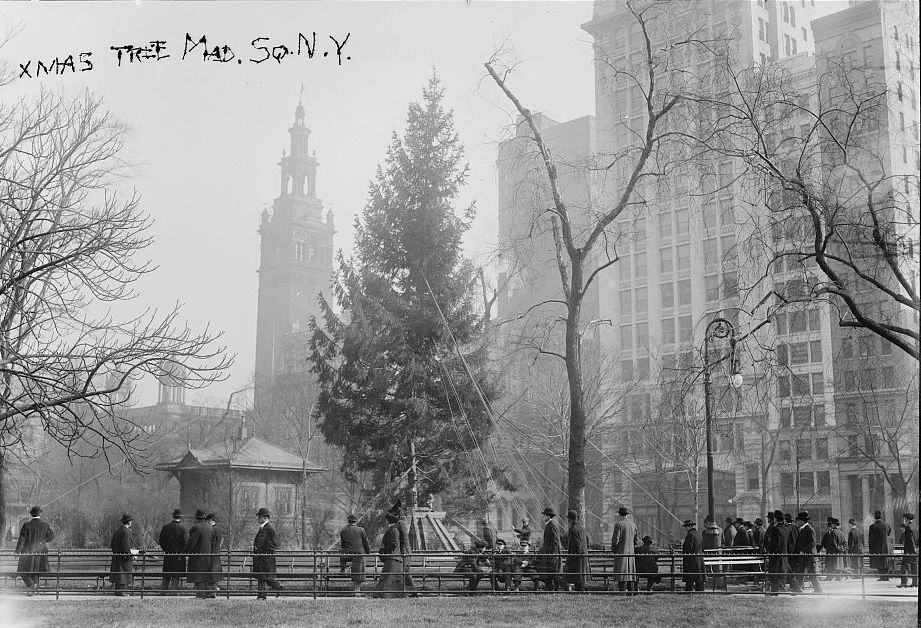 a christmas tree for the ages in madison square park the