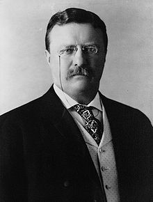 theodore roosevelt and the panama canal essay Theodore roosevelt by james hajik theodore teddy roosevelt was born on october 27 roosevelt realized that a canal in panama would boost world trade.