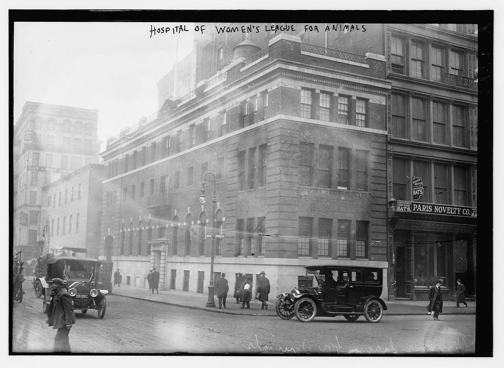 Union square archives the bowery boys new york city history for Garden street animal hospital