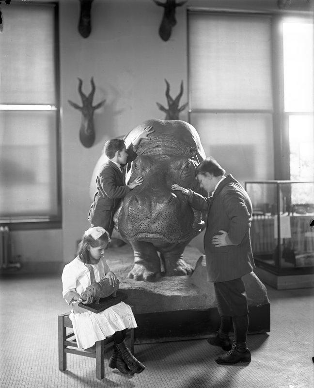Julius Kershner, courtesy AMNH